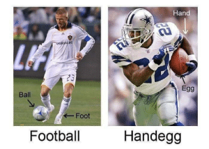 Dank, Football, and Memes: Hand  Egg  Ball  Foot  Football  Handegg Know the difference by BenderrickCumpatch MORE MEMES