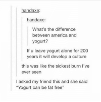 """Being Alone, America, and Bailey Jay: handaxe:  handaxe:  What's the difference  between america and  yogurt?  If u leave yogurt alone for 200  years it will develop a culture  this was like the sickest burn l've  ever seen  I asked my friend this and she said  """"Yogurt can be fat free"""" Follow @whypree_tho_vip he always posts 🔥"""