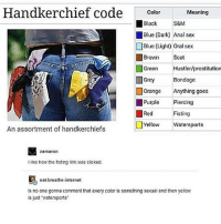 "Anal Sex, Handkerchief Code, and Hustler: Handkerchief code  Color  Meaning  Black  S&M  Blue (Dark Anal sex  Blue (Light) oral sex  Brown Scat  Green  Hustler/prostitution  Bondage  Grey  Orange Anything goes  Purple  Piercing  Red  Fisting  Yellow  Watersports  An assortment of handkerchiefs  zamaron  ilike how the fisting link was clicked.  eat breathe internet  is no one gonna comment that every color is something sexual and then yellow  is just watersports"" O - tumblr textpost textposts bands youtube"