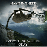 hang in there: HANG IN THERE  EVERYTHING WILL BE  OKAY  memes com