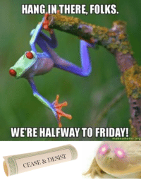 HANG IN THERE, FOLKS.  WERE HALFWAY TO FRIDAY!  makeameme.or  CEASE & DESIST