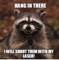 hang in there: HANG IN THERE  IWILL SHOOT THEM WITH MY  LASER!