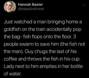 Goldfish, Pop, and Coffee: Hannah Baxter  @lsapalindrome  Just watched a man bringing home a  goldfish on the train accidentally pop  the bag- fish flops onto the floor. 3  people swarm to save him (the fish not  the man). Guy chugs the last of his  coffee and throws the fish in his cup.  Lady next to him empties in her bottle  of water. Save what's important