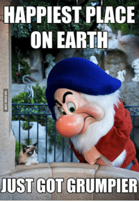 Grumpy Cat, Earthing, and Happiest: HAPPIEST PLACE  ON EARTH  JUST GOT GRUMPER