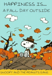 Peanuts: HAPPINESS IS...  A FALL DAY OUTSIDE  SNOOPY AND THE PEANUTS GANG