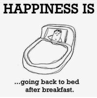 Memes, Breakfast, and Happiness: HAPPINESS IS  ...going back to bed  after breakfast. ohhhh the joy 😋 @jc
