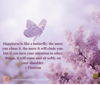 Memes, Butterfly, and Chase: Happiness is like a butterfly: the more  you chase it, the more it will elude you,  but if you turn your attention to other  things, it will come and sit softly on  your shoulder.  Thoreau  www.suddenlysinglecoaching com <3 Deb Eastwood  .