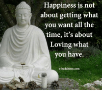 Memes, Time, and Buddhism: Happiness is not  about getting what  you want all the  time, it's about  Loving what  you have  e-buddhism com