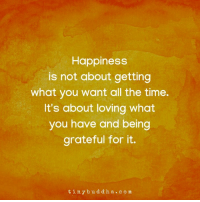 Time, Happiness, and All The: Happiness  is not about getting  what you want all the time.  It's about loving what  you have and being  grateful for it.  tinybuddha.com