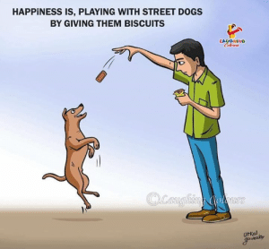 Dogs, Happiness, and Indianpeoplefacebook: HAPPINESS IS, PLAYING WITH STREET DOGS  BY GIVING THEM BISCUITS  LAUGHING  UtKal