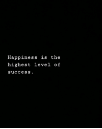 Happiness, Success, and Level: Happiness is the  highest level of  success