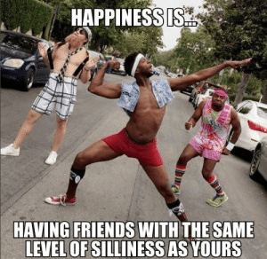 Friends, Memes, and Happiness: HAPPINESSIS  HAVING FRIENDS WITH THE SAME  LEVEL OF SILLINESS AS YOURS This is what   Happiness is  #FunnyMemes #Memes #FunnyPics