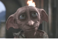 Happy birthday Dobby! A free elf...: Happy birthday Dobby! A free elf...