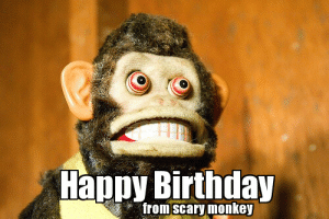 Images of Scary Happy Birthday Meme - #rock-cafe: Happy Birthday  from scary monkey Images of Scary Happy Birthday Meme - #rock-cafe