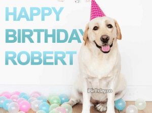 Happy Birthday Robert - Memes, Wishes and Quotes: HAPPY  BIRTHDAY  ROBERT  Birthday.co Happy Birthday Robert - Memes, Wishes and Quotes