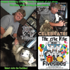 Woo! Sending out big Siberian Husky Happy Birthday wishes and woos from all of us here at #FiveSibes to Robert Forto, our #TheSibeVibe @DogWorksRadio show producer & lead musher for @TeamIneka! 🎉🎈🎂 We were thrilled when he visited us and was greeted by my FiveSibes! Have a great day, Robert!: Happy Birthday Robert Forto, Producer of our show,  The Sibe Vibe, on Dog Works Radio!  не  FivesiBes  CELEBRATE!  EST  THE SBE ViBE  ONAIR  FiveSiBes  com  не  FivesiBeS  www.FiveSibes  Robert visits the FiveSibes!  vibe/  radio.  FIvESIBES SIBERIAN HUSKIES K9 NEWS & REVIEWE ON FACEBOOK Woo! Sending out big Siberian Husky Happy Birthday wishes and woos from all of us here at #FiveSibes to Robert Forto, our #TheSibeVibe @DogWorksRadio show producer & lead musher for @TeamIneka! 🎉🎈🎂 We were thrilled when he visited us and was greeted by my FiveSibes! Have a great day, Robert!