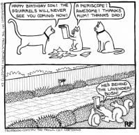 The Gift... #Cats #Iloveontheprowlcatcartoons #Rupertfawcett #Ontheprowl: HAPPY BIRTHDAY SON THE  A PERISCOPE  l SQUIRRELS WILL NEVER  AWESOME THANKS  SEE you COMING NOW!  MUM THANKS DAD!  HES BEHIND  THE LAVENDER  BUSH!  FACEBOOK COM/ ON THE PROwL CAT CARTOONS The Gift... #Cats #Iloveontheprowlcatcartoons #Rupertfawcett #Ontheprowl