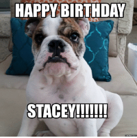 gavin and stacey: HAPPY BIRTHDAY  STACEY!!!!!!!  Memes Com