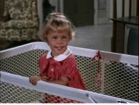 Memes, Stephen, and Happy Birthday: Happy Birthday Tabitha Stephens!! Watch Bewitched weekdays at 3p ET on Antenna TV.