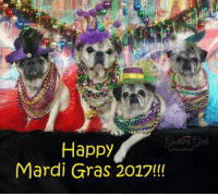 Memes, Mardi Gras, and 🤖: Happy  by and Kisses  Mardi Gras 2017!!! WooHoo!!! Time to PARTY!!! Happy Mardi Gras!!!! MWAH!!! xoxo Theodora Grace, Oliver James, Maddie Kathryn and Zoe Elizabeth