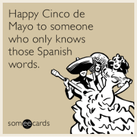 "Spanish, Tumblr, and Blog: Happy Cinco de  Mayo to someone  who only knows  those Spanish  words.  someecards <p><a href=""http://memehumor.net/post/160337138001/happy-cinco-de-mayo-to-someone-who-only-knows"" class=""tumblr_blog"">memehumor</a>:</p>  <blockquote><p>Happy Cinco de Mayo to someone who only knows those Spanish words.</p></blockquote>"