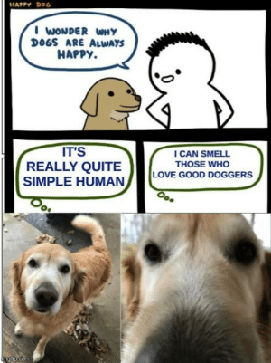 Cross over meme with my pupper (:: HAPPY DOG  I WONDER WNY  DOGS ARE ALWAYS  HAPPY.  IT'S  REALLY QUITE  SIMPLE HUMAN  I CAN SMELL  THOSE WHO  LOVE GOOD DOGGERS  imgflip.com Cross over meme with my pupper (: