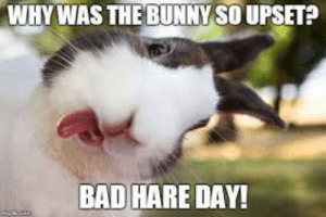 Happy Easter 149: Happy Easter 149