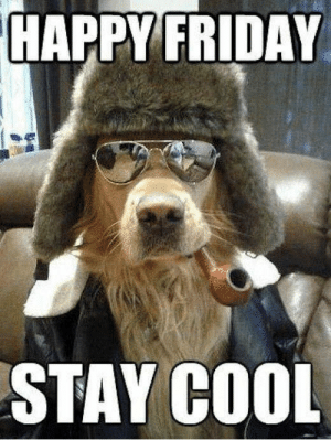 Friday, Memes, and Cool: HAPPY FRIDAY  STAY COOL Happy Friday Folks.. Have a great weekend!.. :) <3  Chris..