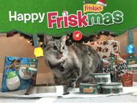In the 12 Days of Friskmas my humans gave to me…my favorite @Friskies products wrapped personally for me! Check out puri.na-nom to get a gift for your cat and print personalized can wraps and gift tags this holiday season. partner friskies: Happy  Friskies  NALA  PURINA  Friskies  To:  From  Happy  cruncu  Origina In the 12 Days of Friskmas my humans gave to me…my favorite @Friskies products wrapped personally for me! Check out puri.na-nom to get a gift for your cat and print personalized can wraps and gift tags this holiday season. partner friskies