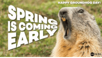 Groundhog PunxsutawneyPhil did NOT see his shadow and predicts an early Spring. Happy GroundhogDay!: HAPPY GROUNDHOG DAY!  SPRING  EARLY  NEWS  abc  ISTOCK Groundhog PunxsutawneyPhil did NOT see his shadow and predicts an early Spring. Happy GroundhogDay!