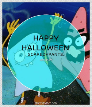 Halloween, SpongeBob, and Happy: HAPPY  HALLOWEEN.  SCAREDYPANTS.  MRS. PUFF  BIGHIVEMIND.COM Over 100 Spongebob Square Pants Quotes That Will Make You Smile ...