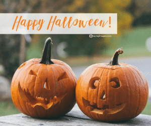 Best Halloween Quotes and Sayings Images, Cards #sayingimages #halloweenquotes #halloweencards #happyhalloween #halloween: Happy Hattoween!  SayingImages.com Best Halloween Quotes and Sayings Images, Cards #sayingimages #halloweenquotes #halloweencards #happyhalloween #halloween
