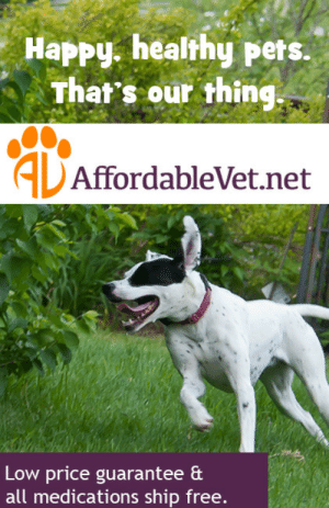 meme-mage:  We are veterinarians and entrepreneurs. We are pet owners. We are regular people, and we want to help take care of your pets. Launched in January 2015, AffordableVet.net is a joint effort by Dr.  Randolph Stepusin, DVM and Jeff Saporito. In conjunction, Dr. Stepusin  is developing A Step Up Veterinary Clinic in Bethel Park, Pennsylvania, which will double as the official headquarters of AffordableVet.  Most pet medication websites are ugly, overloaded with images and  text you don't need to read, and full of phony sales to make you feel  like you're getting a deal. We created the opposite - a clean, easy to  search website without sales or confusion. Come here, get what you need,  and get it shipped to your door. It's affordable, and it's easy. http://www.affordablevet.net/ : Happy. healthy pets.  That's our thing.  ALAffordableVet.net  Low price guarantee &  all medications ship free. meme-mage:  We are veterinarians and entrepreneurs. We are pet owners. We are regular people, and we want to help take care of your pets. Launched in January 2015, AffordableVet.net is a joint effort by Dr.  Randolph Stepusin, DVM and Jeff Saporito. In conjunction, Dr. Stepusin  is developing A Step Up Veterinary Clinic in Bethel Park, Pennsylvania, which will double as the official headquarters of AffordableVet.  Most pet medication websites are ugly, overloaded with images and  text you don't need to read, and full of phony sales to make you feel  like you're getting a deal. We created the opposite - a clean, easy to  search website without sales or confusion. Come here, get what you need,  and get it shipped to your door. It's affordable, and it's easy. http://www.affordablevet.net/