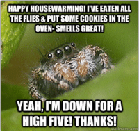 Misunderstood Spider has a Misunderstood Housewarming... :(: HAPPY HOUSEWARMING IVE EATEN ALL  THE FLIES&PUT SOMECOOKIES IN THE  OVEN-SMELLS GREAT!  YEAH,IM DOWN FOR A  HIGH FIVE! THANKS!  quick meme com Misunderstood Spider has a Misunderstood Housewarming... :(