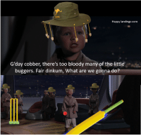Memes, 🤖, and Core: Happy landings-core  G'day cobber, there's too bloody many of the little  buggers. Fair dinkum, What are we gonna do? Happy #Australiaday to everyone.
