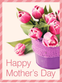 Dank, Mother's Day, and Happy: Happy  Mother's Day #jussayin