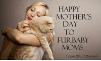 Memes, Moms, and Mother's Day: HAPPY  MOTHER'S  DAY  TO  FURBABY  MOMS  Care About Aimas Furbaby moms are the best moms in the whole wide world! <3