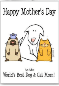 Mother's Day: Happy Mother's Day  to the  World's Best Dog & Cat Mom!