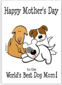 To the best doggy mothers out there!: Happy Mother's Day  to the  World's Best Dog Mom! To the best doggy mothers out there!