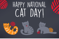 HAPPY NATIONAL  CAT DAY On #NationalCatDay, we're celebrating our feline friends by posting all cats, all day. Post a pic of your fave kitten below! on.hln.tv/96v6zC