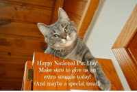 Happy Monday!: Happy National Pet Day!  Make sure to give us an  extra snuggle today!  (And maybe a special treat Happy Monday!