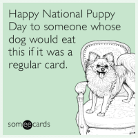 """<p><a href=""""http://memehumor.net/post/158784346958/happy-national-puppy-day-to-someone-whose-dog"""" class=""""tumblr_blog"""">memehumor</a>:</p>  <blockquote><p>Happy National Puppy Day to someone whose dog would eat this if it was a regular card.</p></blockquote>: Happy National Puppy  Day to someone whose  dog would eat  this if it was a  regular card  someecards <p><a href=""""http://memehumor.net/post/158784346958/happy-national-puppy-day-to-someone-whose-dog"""" class=""""tumblr_blog"""">memehumor</a>:</p>  <blockquote><p>Happy National Puppy Day to someone whose dog would eat this if it was a regular card.</p></blockquote>"""