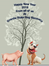 Happy New Year 2019 from all of us at Granite State Dog Recovery.: Happy New Year  2019  From all of us  state Pog Recover Happy New Year 2019 from all of us at Granite State Dog Recovery.