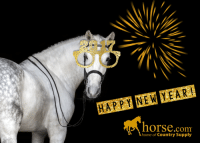 From everyone at Horse.com, we wish you health, love and laughter! HAPPY NEW YEAR!!!: HAPPY NEW YEAR!  horse.com  home of Country Supply From everyone at Horse.com, we wish you health, love and laughter! HAPPY NEW YEAR!!!