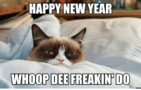 Memes, Colette, and Pippin: HAPPY NEW YEAR  WHOOP DEE PREAKINPIDOO Sakari with Colette, Hugolina, Meshuggah, Frida and Pippin wish all our fans a happy new year!