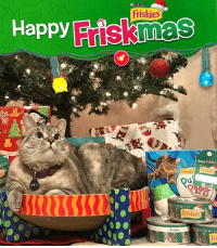 Looking for gift ideas for your furry friends? You can get their favorite @Friskies products and wrap them in personalized paper and gift tags in honor of 12 Days of Friskmas. Check out puri.na-purrfect for more information. What's on your cat's Friskmas list? partner: Happy  NNA  PURINA  Friskies  Friski  From:  Frislies Looking for gift ideas for your furry friends? You can get their favorite @Friskies products and wrap them in personalized paper and gift tags in honor of 12 Days of Friskmas. Check out puri.na-purrfect for more information. What's on your cat's Friskmas list? partner
