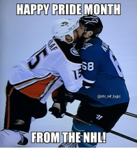 Logic, Memes, and National Hockey League (NHL): HAPPY PRIDE MONTH  SB  @nhl_ref_logic  FROM THE NHL I've been repeatedly bothered to post something for pride so here it is enjoy 🏳️‍🌈👬👨‍❤️‍👨
