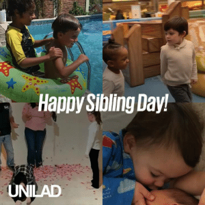 Happy siblings day! We can't live with them, but can't live without them 😂😂: Happy Sibling Day!  UNILAD Happy siblings day! We can't live with them, but can't live without them 😂😂