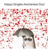 Memes, 🤖, and Happy Single Awareness Day: Happy Singles Awareness Day! ❤️ Half Price Candy Day! ❤️ #diplymix