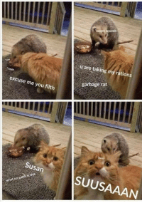 Suusaaan: happy squeek  u are taking my rations  om  nom  garbage rat  excuse me you filth  Susan  SUUSAAAN Suusaaan